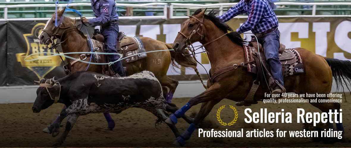 Professional articles for western riding