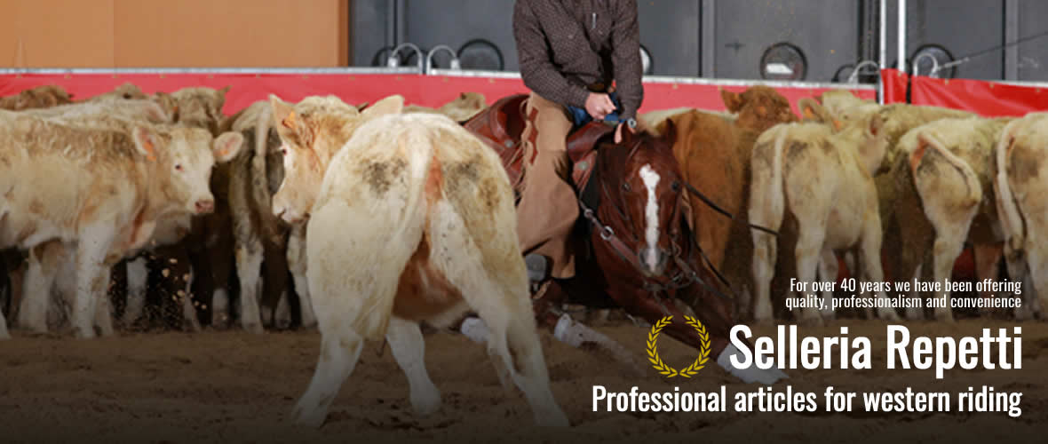 special offer Professional articles for western riding