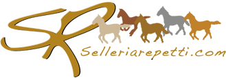 Selleria Repetti: sale of professional articles for western riding, saddles, stirrups, headboards, tedini, bites, spurs