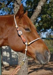 Headsetter Martin Saddlery